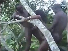 คลิปโป๊คนป่าหาดูยาก ชนเผ่าแอฟริกา ขึ้นต้นไม้เย็ดกัน กลัวคนเห็นโดนช่างกล้องซูมถ่าย สวิงกิ้งด้วย